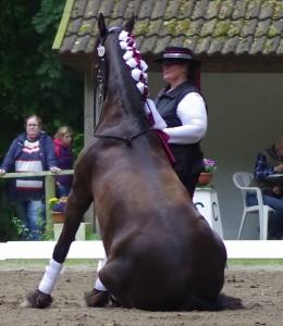 Ulrike Ohlsen & Koekoeksblom